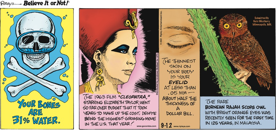 Ripley's Believe It or Not Comic Strip for September 12, 2021
