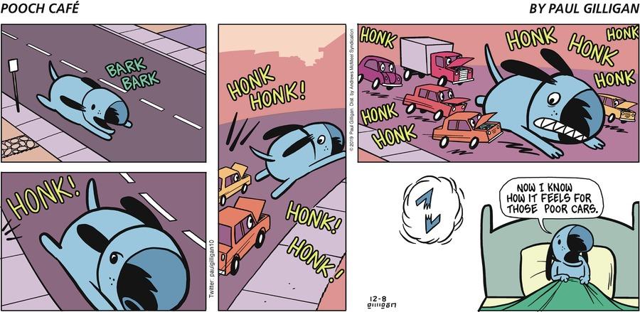 Pooch Cafe Comic Strip for December 08, 2019