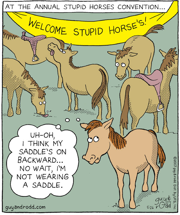 "At the annual Stupid Horses Convention... Welcome Stupid Horse's! ""Uh-oh, I think my saddle's on backward...No wait, I'm not wearing a saddle."""