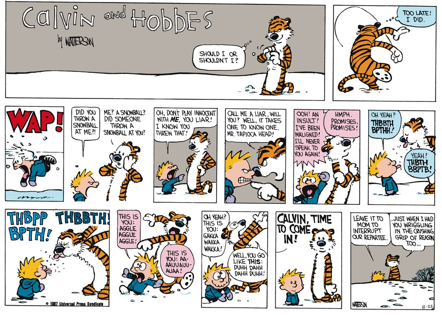 Calvin and Hobbes Comic Strip for January 18, 1987