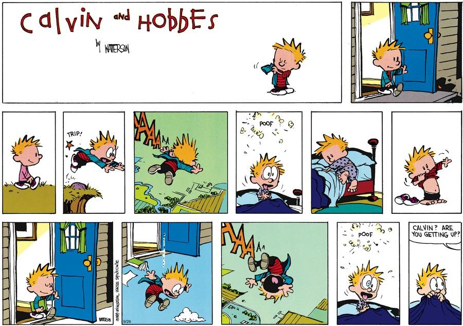 Calvin and Hobbes Comic Strip for November 19, 1989