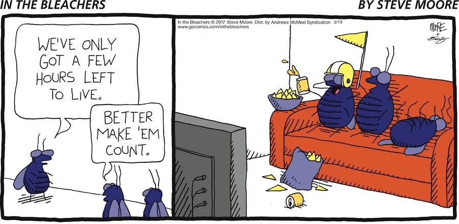 In the Bleachers for Feb 19, 2017 Comic Strip