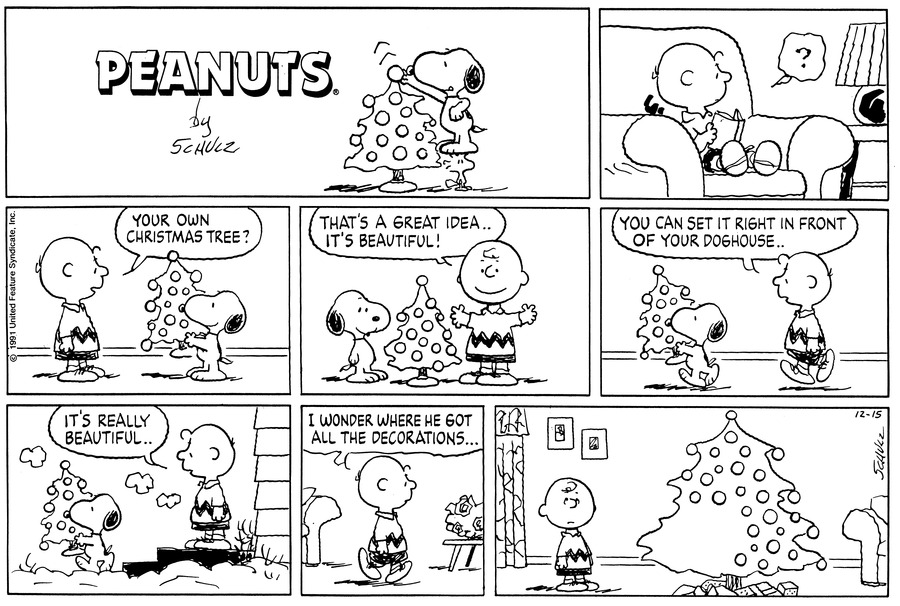Peanuts Comic Strip for December 15, 1991