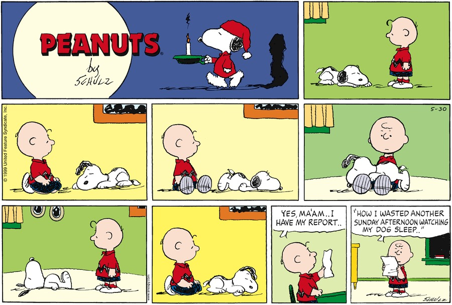"Snoopy wears a night shirt and cap and holds a candle.<BR><BR> Charlie Brown looks at Snoopy sleeping.<BR><BR> Charlies sits next to Snoopy who sleeps.<BR><BR> Snoopy sleeps in a new position.<BR><BR> Snoopy sleeps on Charlie's lap.<BR><BR> Charlie watches Snoopy.  Snoopy sleeps on his back.<BR><BR> Snoopy stil sleeps.<BR><BR> Charlie sits at his school desk with a piece of paper.  Charlie says, ""Yes, ma'am.. I have my report..""<BR><BR> Charlies reads in front of the class, ""How I wasted another Sunday afternoon watching my dog sleep.""<BR><BR>"