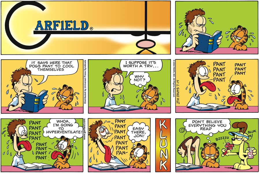 Garfield Comic Strip for July 14, 2002