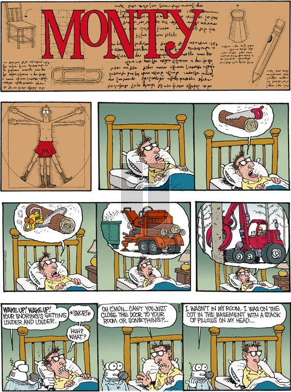 Monty - Sunday February 2, 2020 Comic Strip