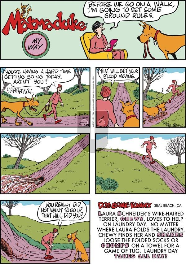 Marmaduke - Sunday February 23, 2020 Comic Strip