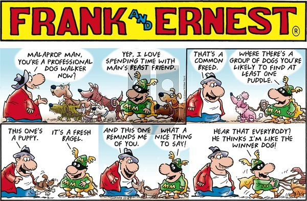 Frank and Ernest on Sunday November 29, 2020 Comic Strip