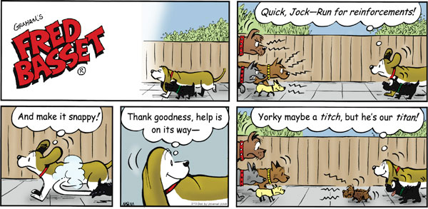 Fred Basset Comic Strip for February 13, 2011