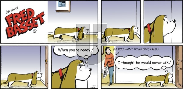 Fred Basset on Sunday November 17, 2019 Comic Strip