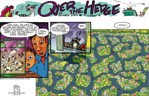 Over the Hedge on Sunday June 28, 2020 Comic Strip