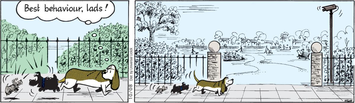 Fred Basset Comic Strip for October 08, 2011