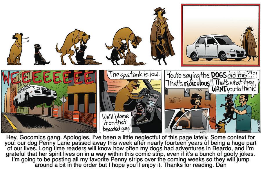 Beardo Comic Strip for February 21, 2020