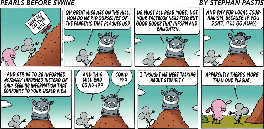 Pearls Before Swine Comic Strip for August 30, 2020