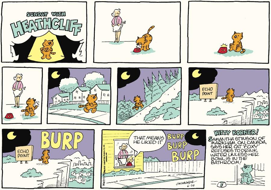 Heathcliff Comic Strip for June 20, 2021