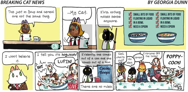 Breaking Cat News on Sunday May 3, 2020 Comic Strip