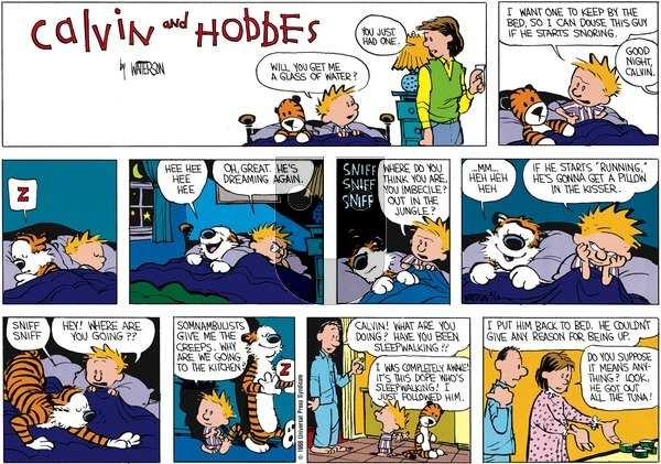 Calvin and Hobbes - Sunday April 3, 1988 Comic Strip