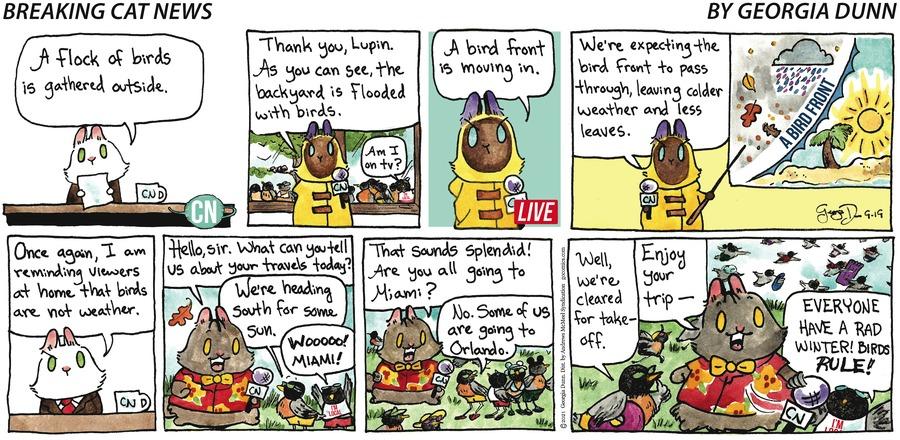 Breaking Cat News Comic Strip for September 19, 2021