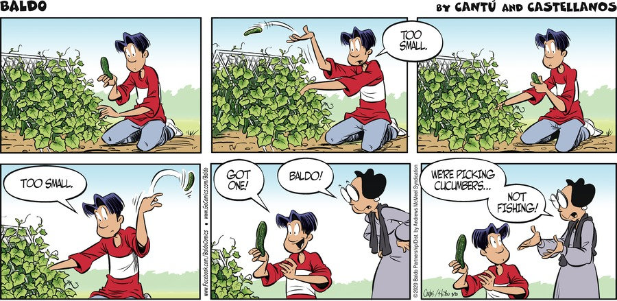 Baldo Comic Strip for September 20, 2020