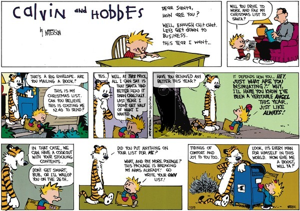 Calvin and Hobbes - Sunday December 3, 1989 Comic Strip