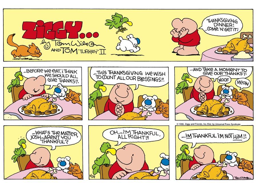 Ziggy Comic Strip for November 24, 1996