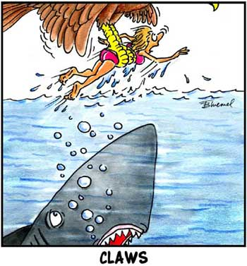 Birdbrains Comic Strip for June 11, 2021