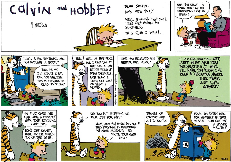 Calvin and Hobbes Comic Strip for December 03, 1989