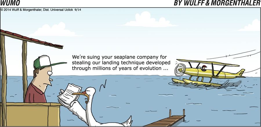 Duck: We're suing your seaplane company for stealing our landing technique through millions of years of evolution...