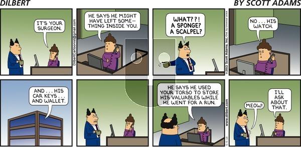 Dilbert - Sunday May 5, 2013 Comic Strip