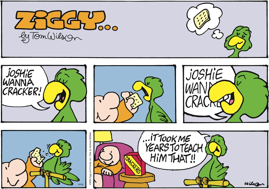 Ziggy Comic Strip for October 18, 2020