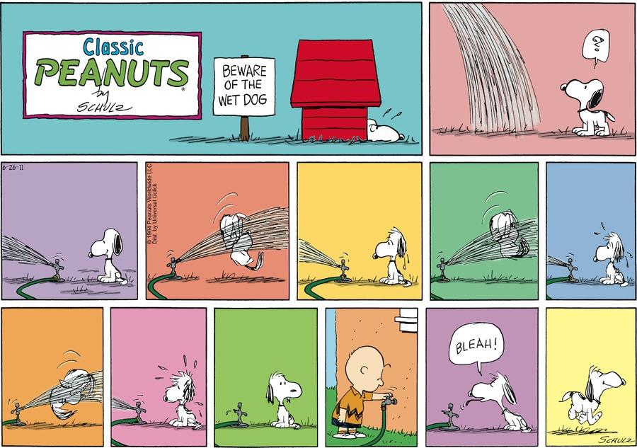 Peanuts Comic Strip for June 26, 2011