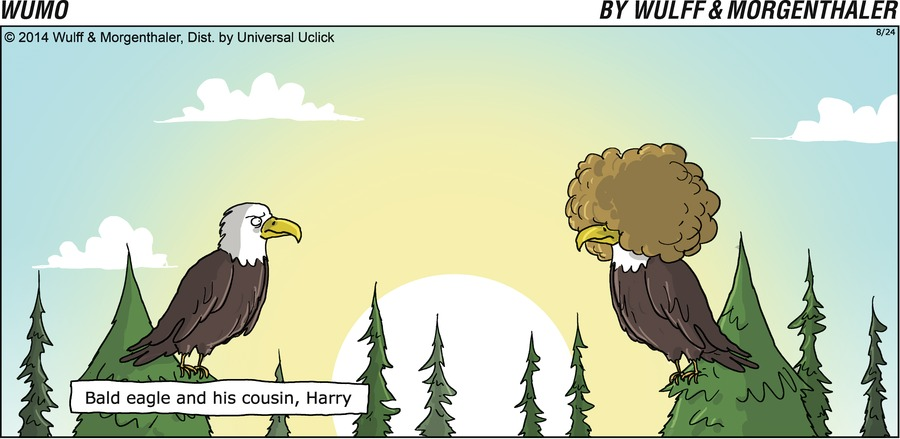 Bald eagle and his cousin, Harry