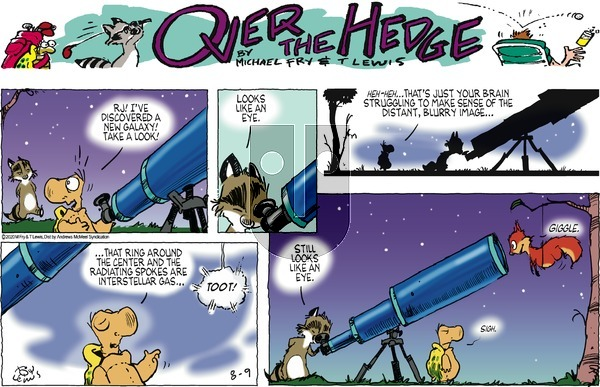 Over the Hedge on Sunday August 9, 2020 Comic Strip