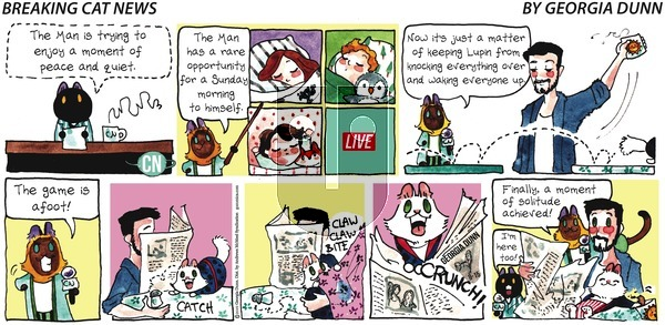 Breaking Cat News on Sunday September 15, 2019 Comic Strip