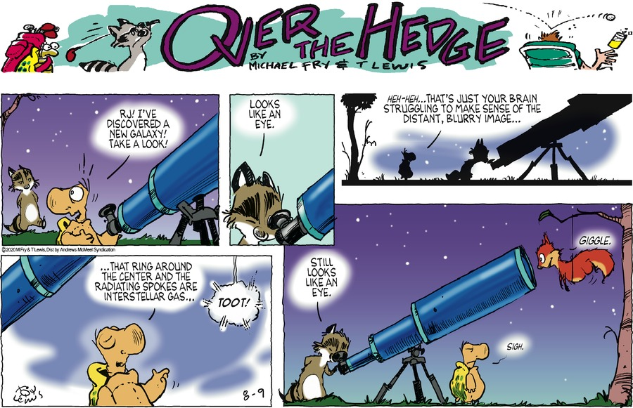 Over the Hedge Comic Strip for August 09, 2020