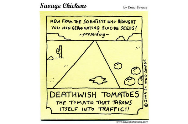 New from the scientist who brought you non-germinating suicide seeds! Presenting Death wish tomatoes: The tomato that throws itself into traffic!!