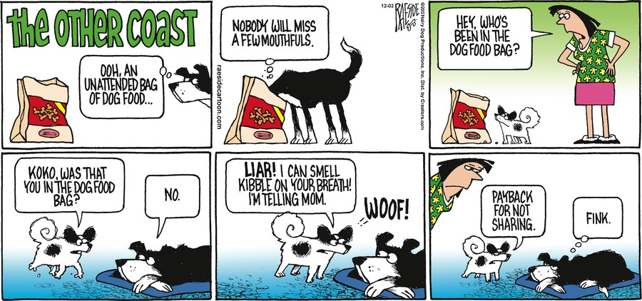 The Other Coast for Dec 2, 2012 Comic Strip