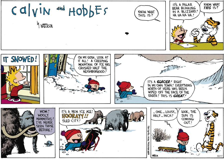 Calvin and Hobbes Comic Strip for December 10, 1989