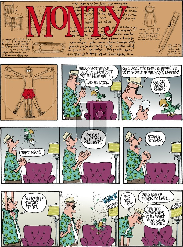 Monty on Sunday July 5, 2020 Comic Strip