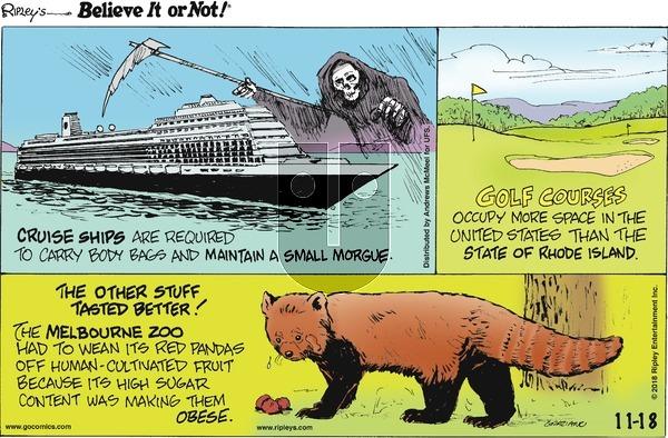 Ripley's Believe It or Not on Sunday November 18, 2018 Comic Strip
