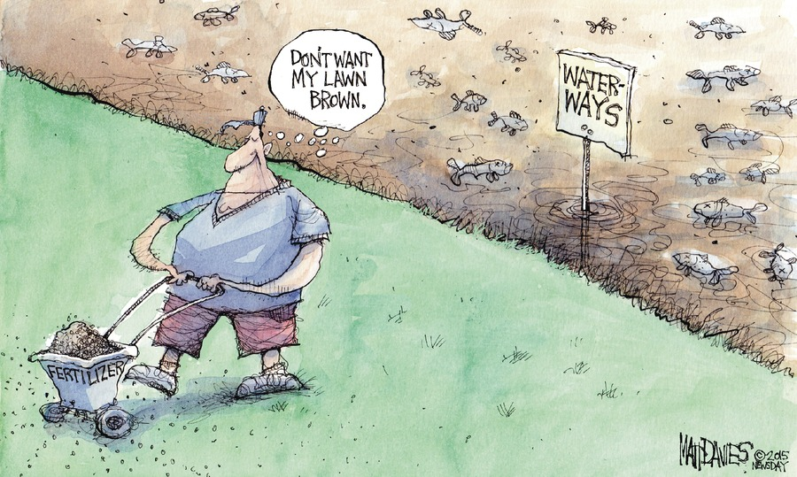 Matt Davies Comic Strip for June 07, 2015