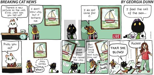 Breaking Cat News on Sunday April 29, 2018 Comic Strip