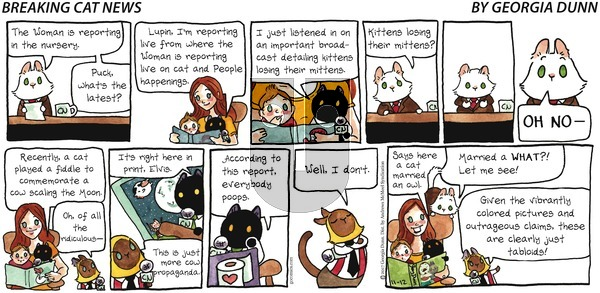 Breaking Cat News on Sunday November 12, 2017 Comic Strip