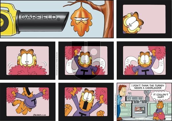 Garfield - Sunday November 24, 2019 Comic Strip