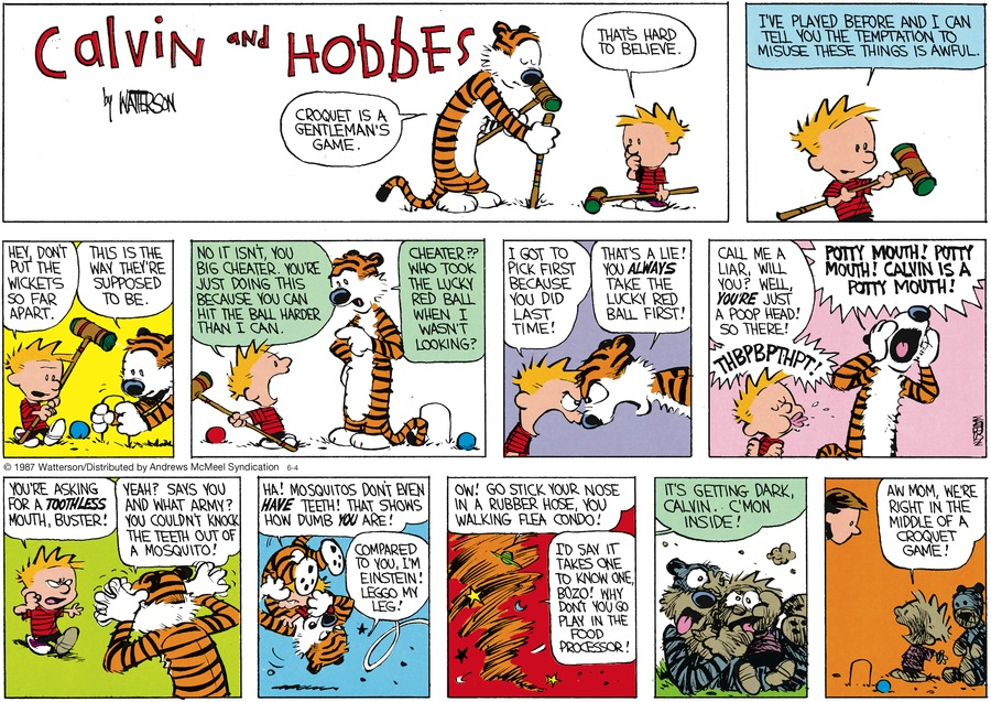 Calvin and Hobbes Comic Strip for June 04, 2017