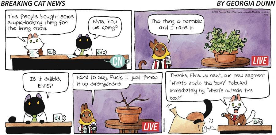 Breaking Cat News for Apr 16, 2017 Comic Strip