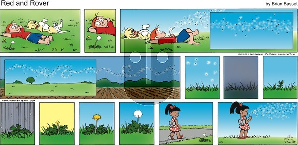 Red and Rover on Sunday August 8, 2021 Comic Strip