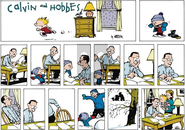 Calvin and Hobbes - Sunday January 14, 1990 Comic Strip