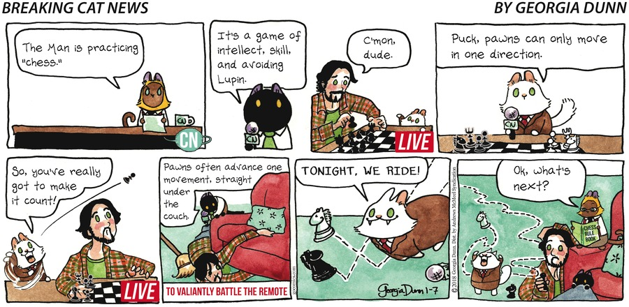 Breaking Cat News for Jan 7, 2018 Comic Strip