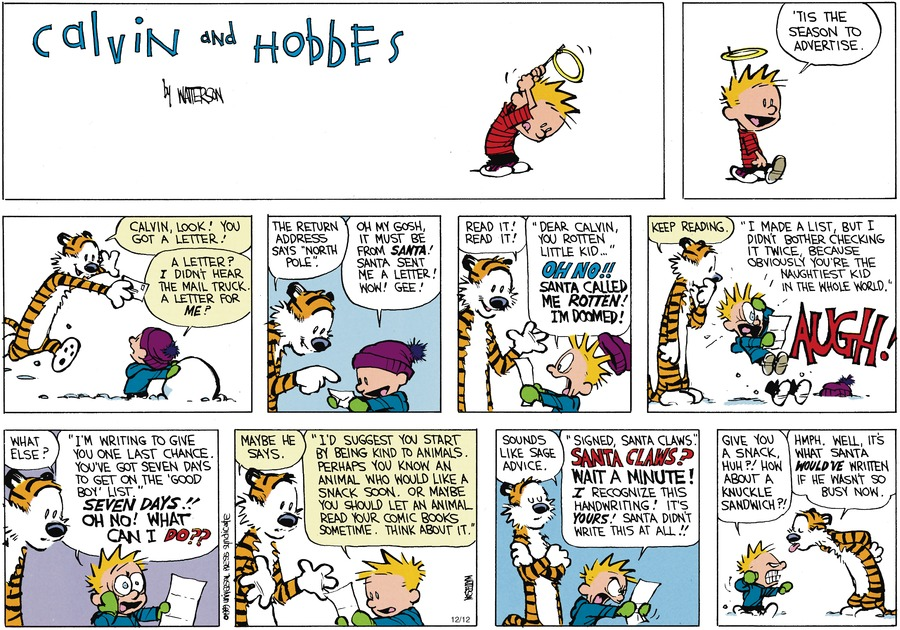 Calvin and Hobbes Comic Strip for December 17, 1989